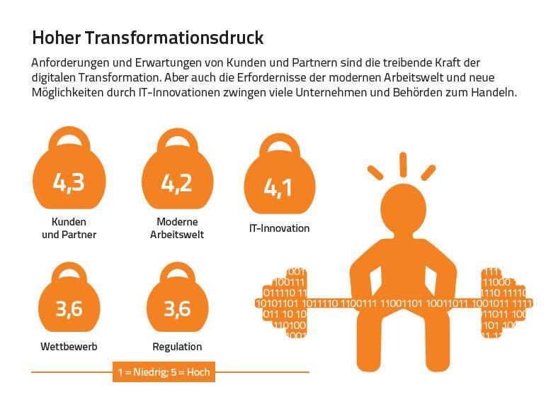 Infografik: Digitale Exzellenz