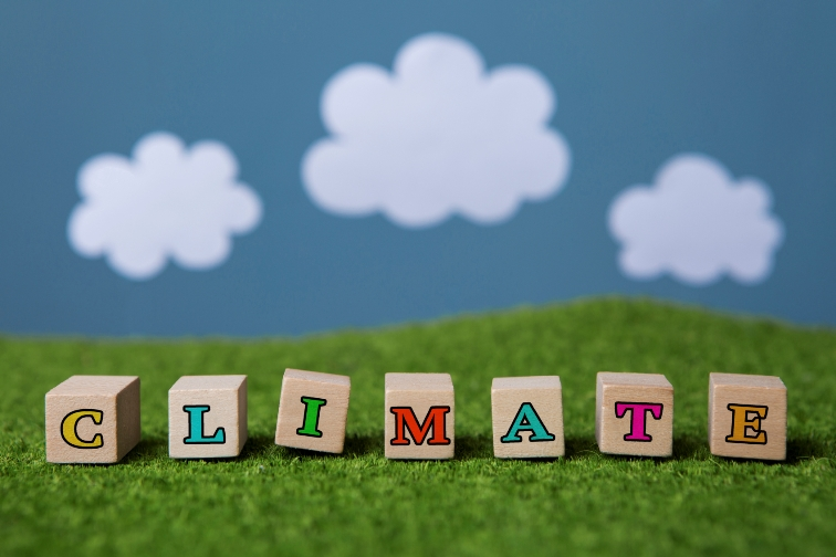 Digitalisierung als Klimaretter