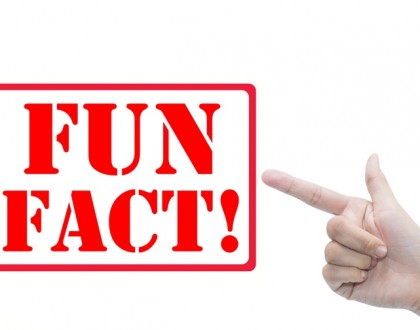 Fun Fact Blockchain