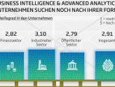 Infografik Datenqualität Reife