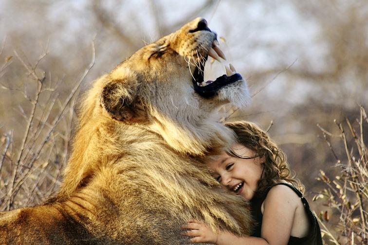 Löwe und Kind
